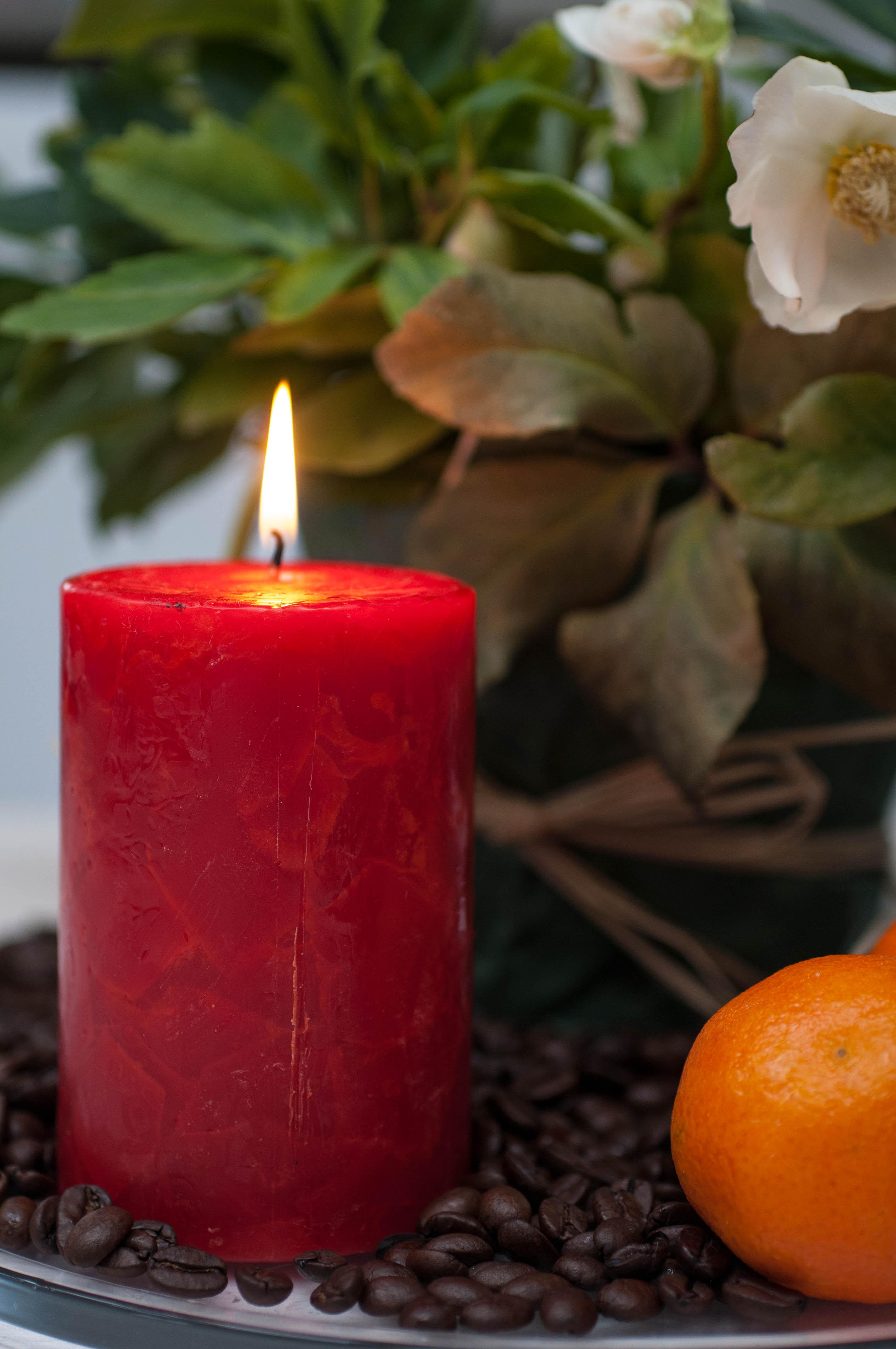 advent weihnachtszeit christrose kerzen pink chillies. Black Bedroom Furniture Sets. Home Design Ideas