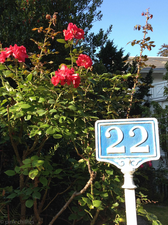 Haustürnummer und Rosen
