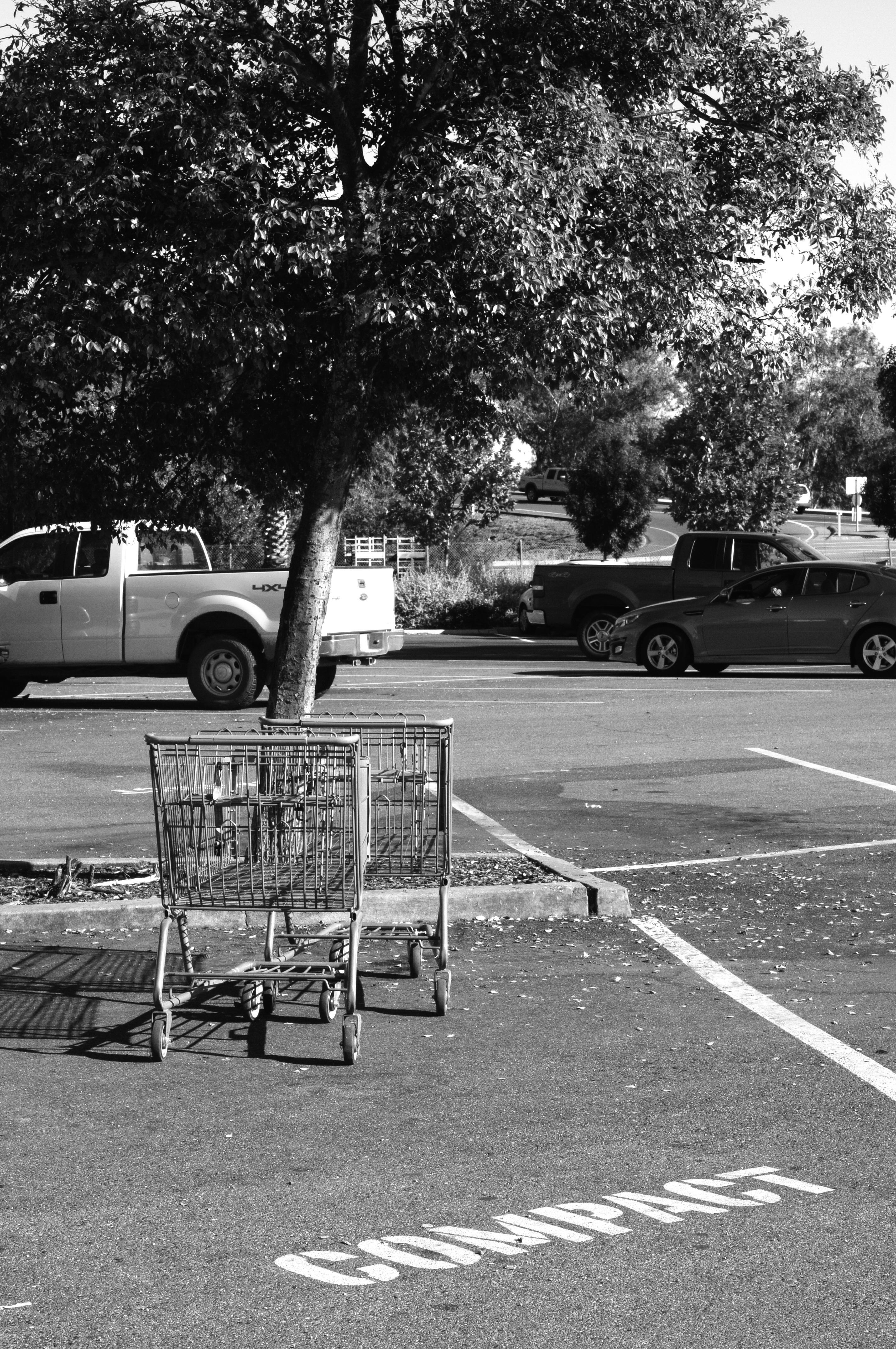 Einkaufswagen Parkplatz Compact Car