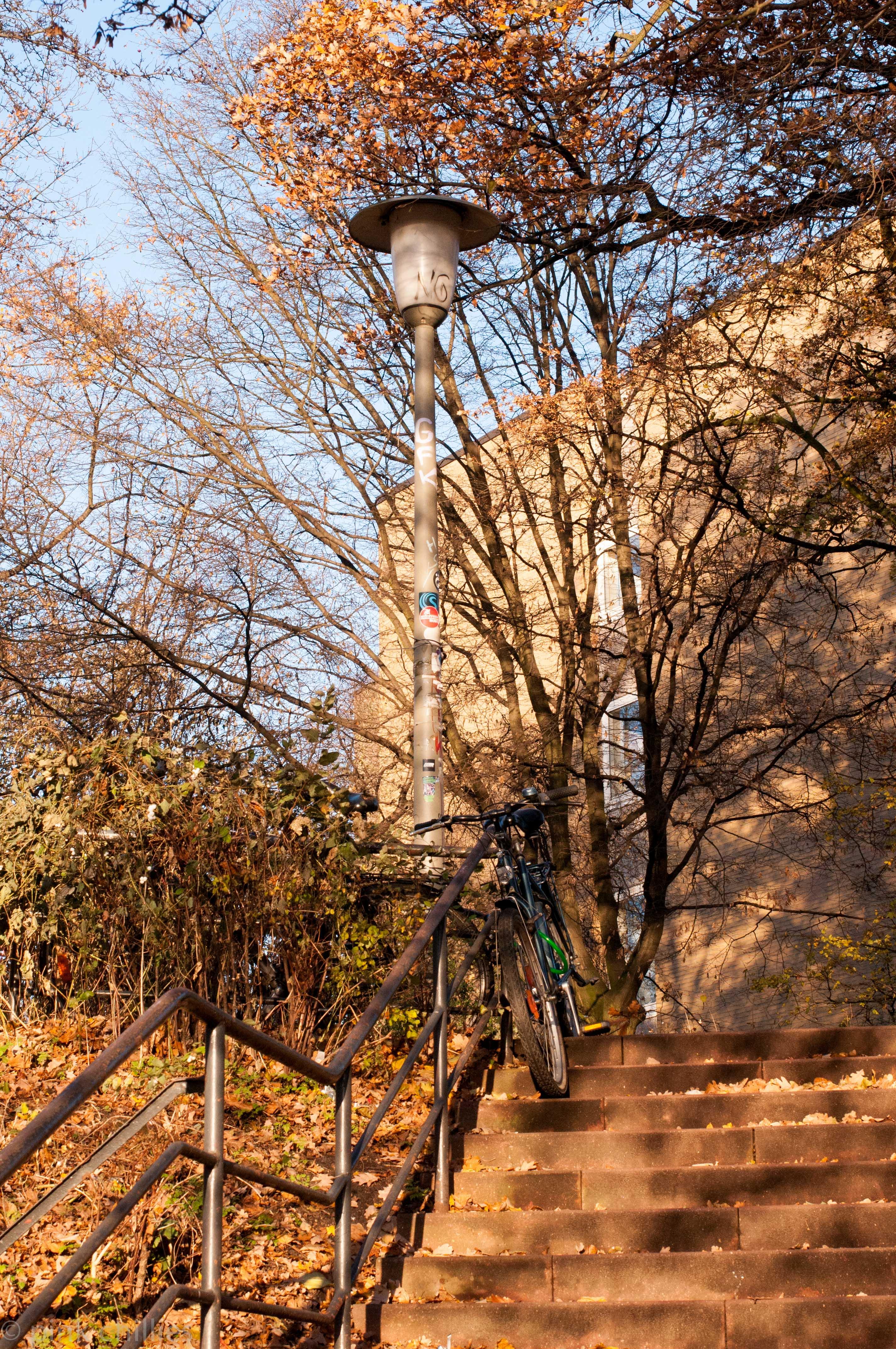 Treppe im Dezemberlicht