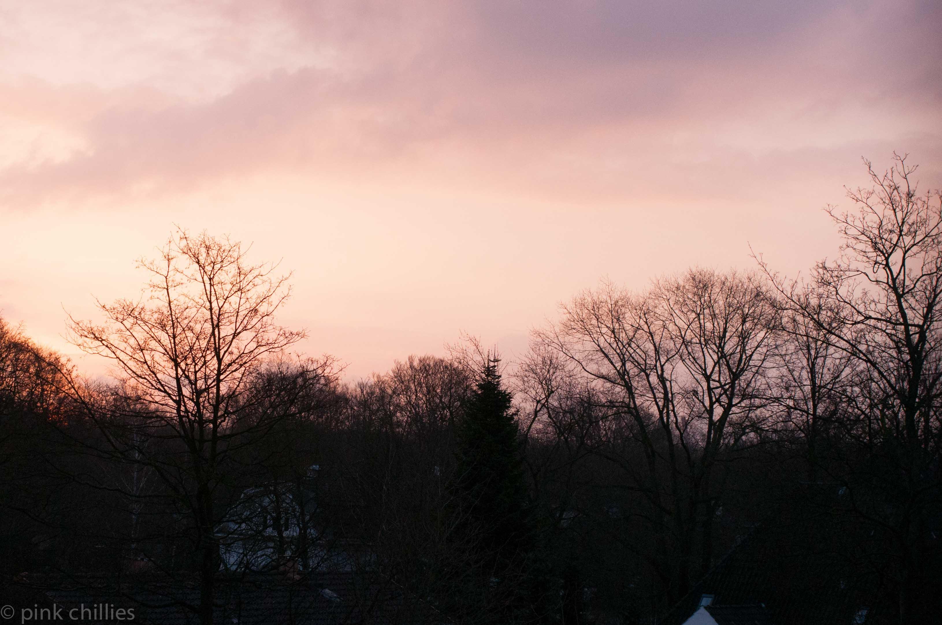morgenstimmung