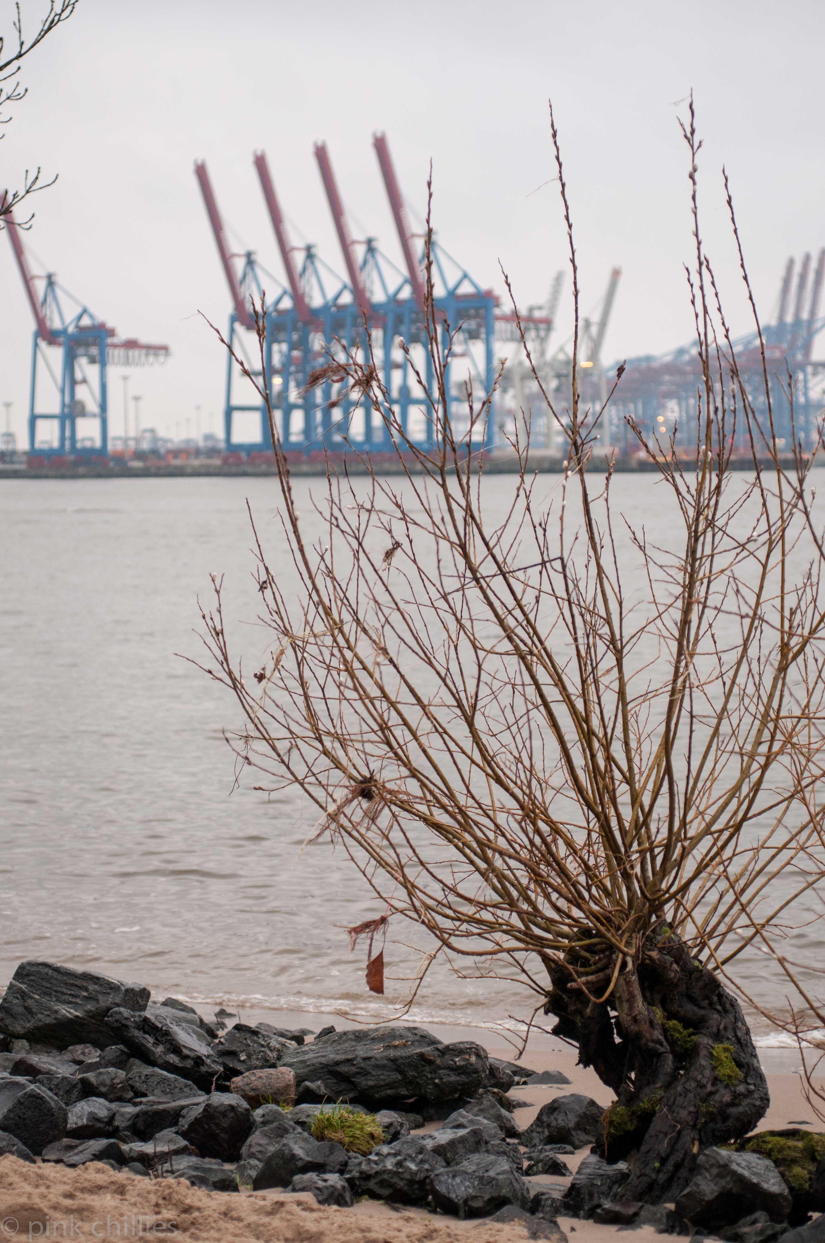 Blick auf Hamburger Hafen