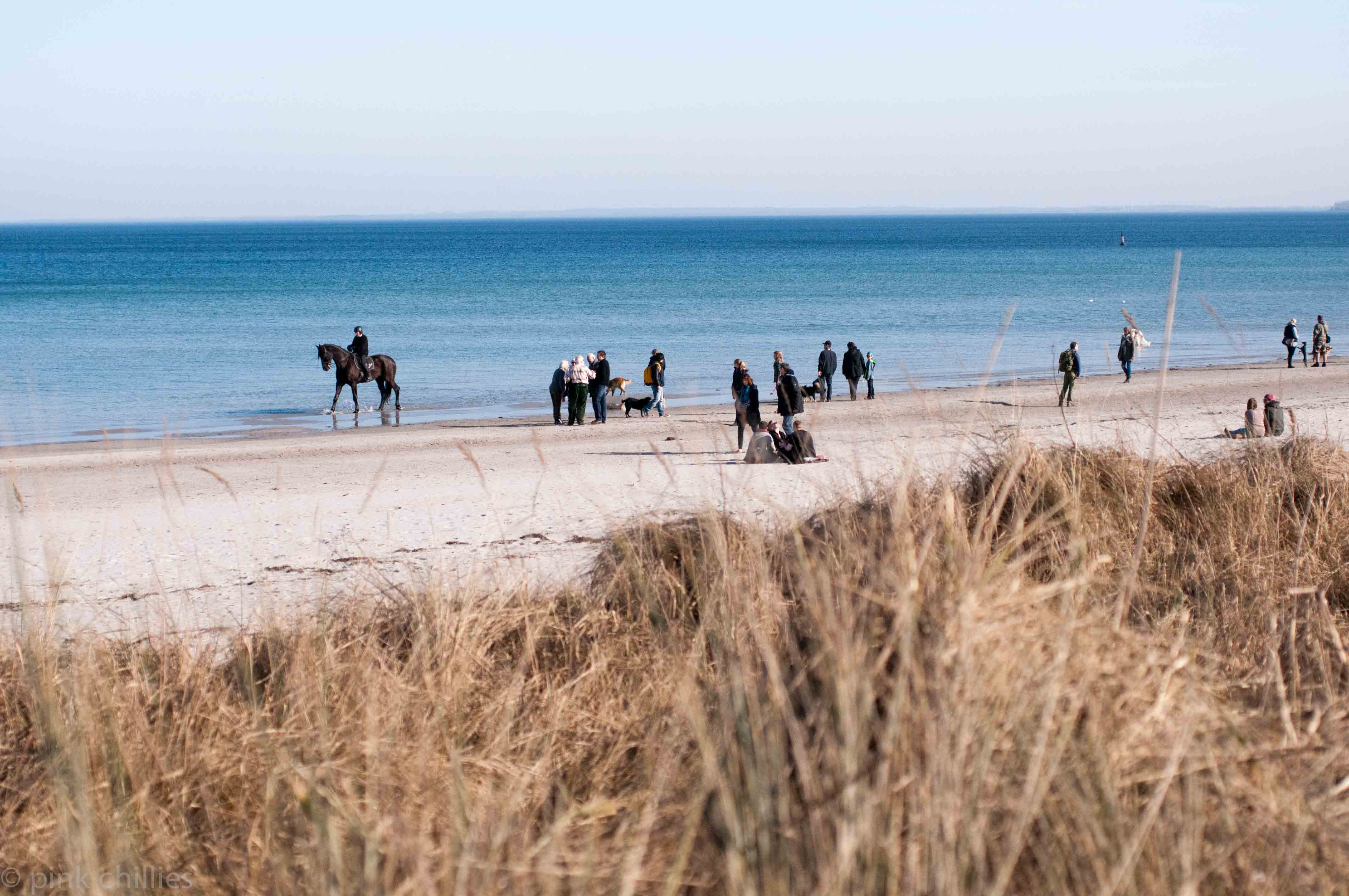 Strandleben an der Ostsee mit Reiter