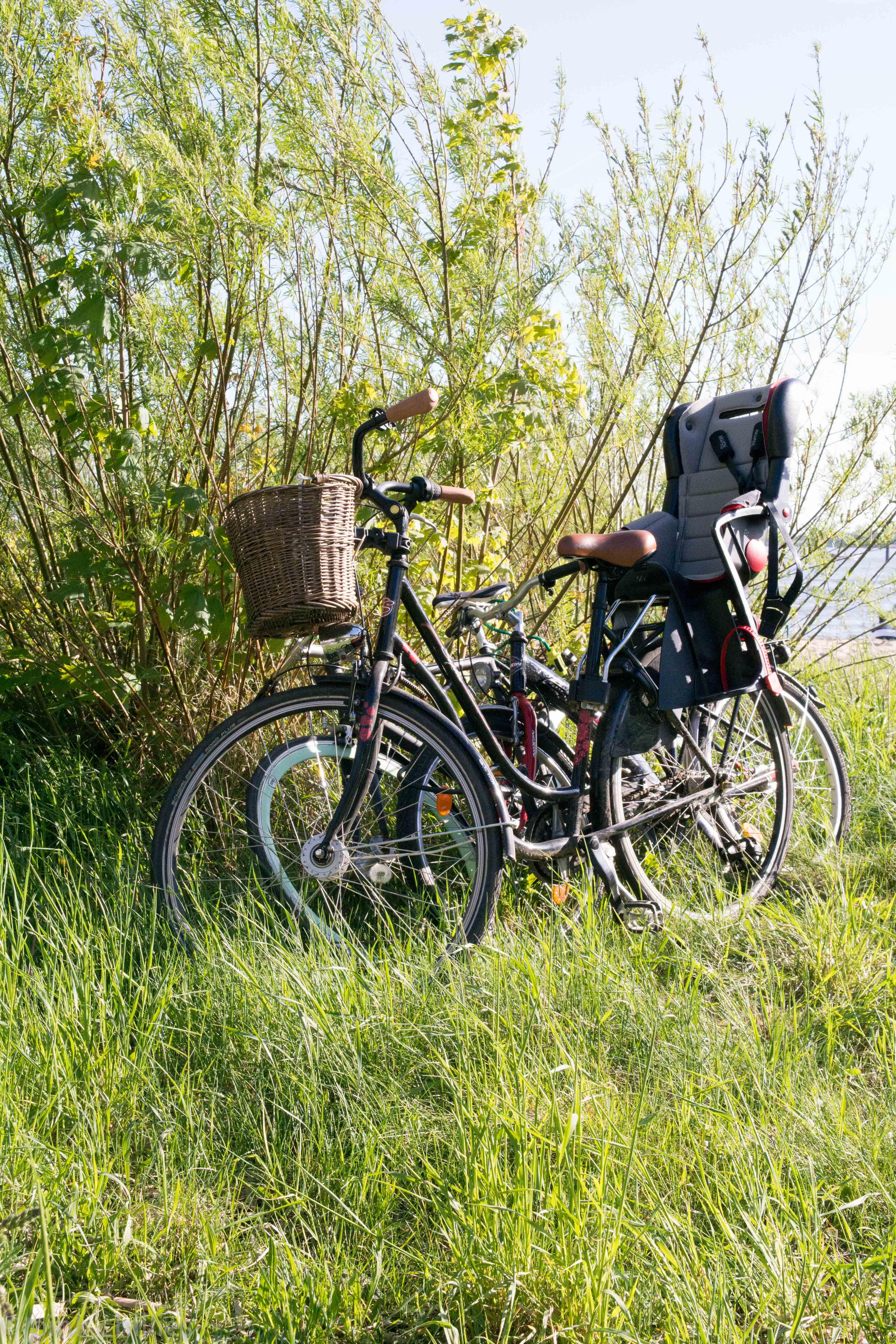 Fährräder in Busch