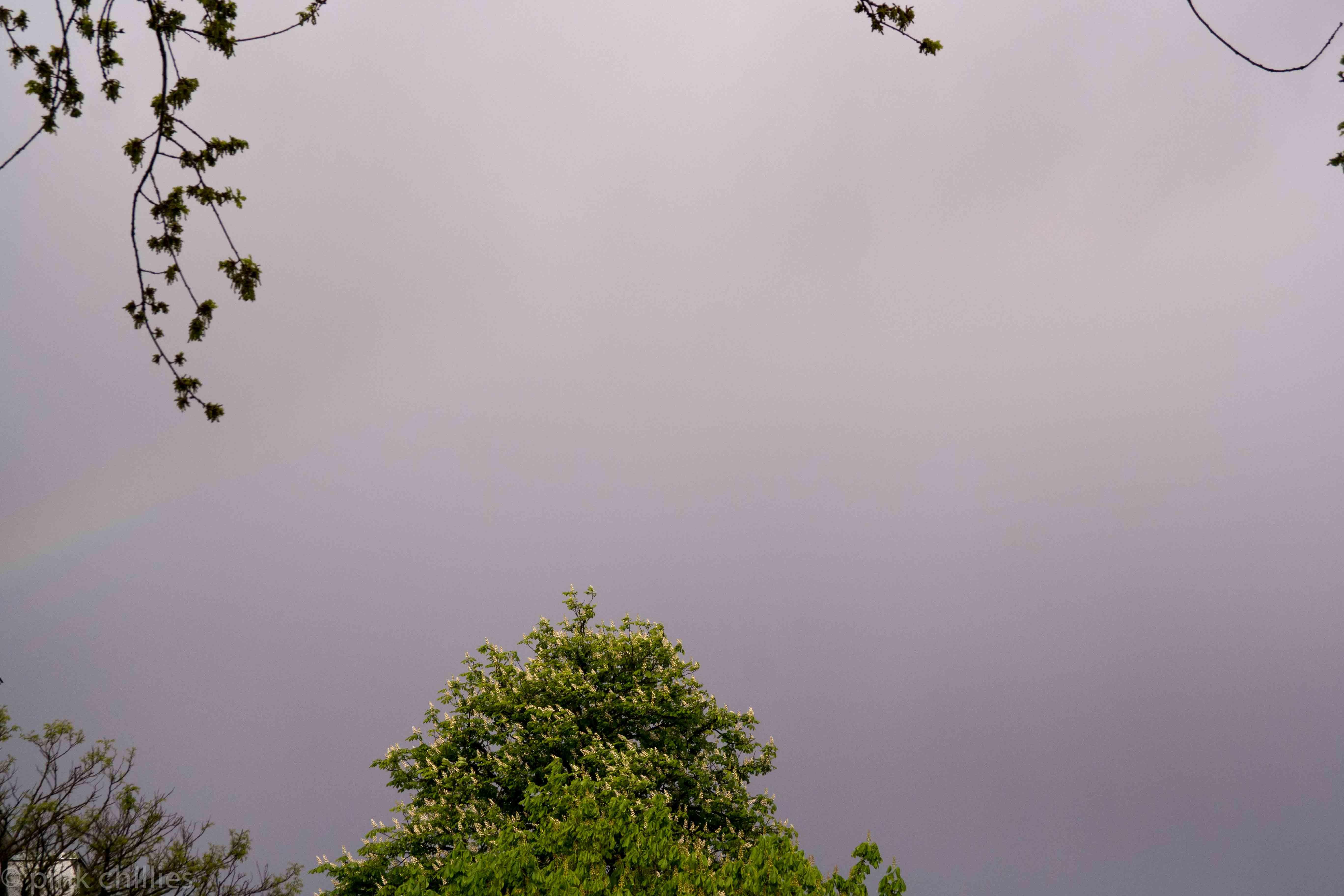 Regenbogen unscharf-0171