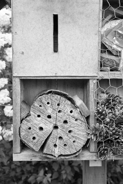 kasten im garten-0994
