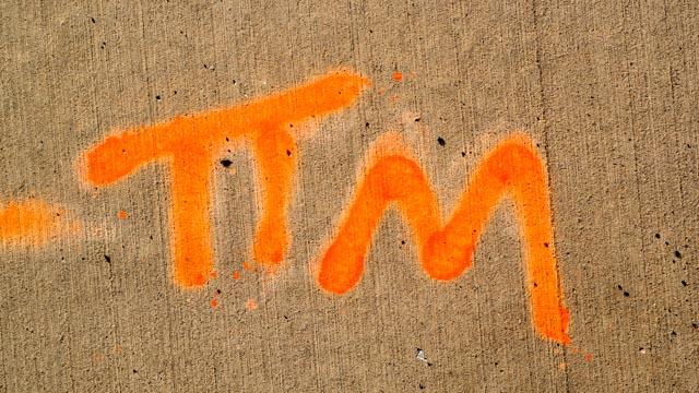 TIM W29-1382