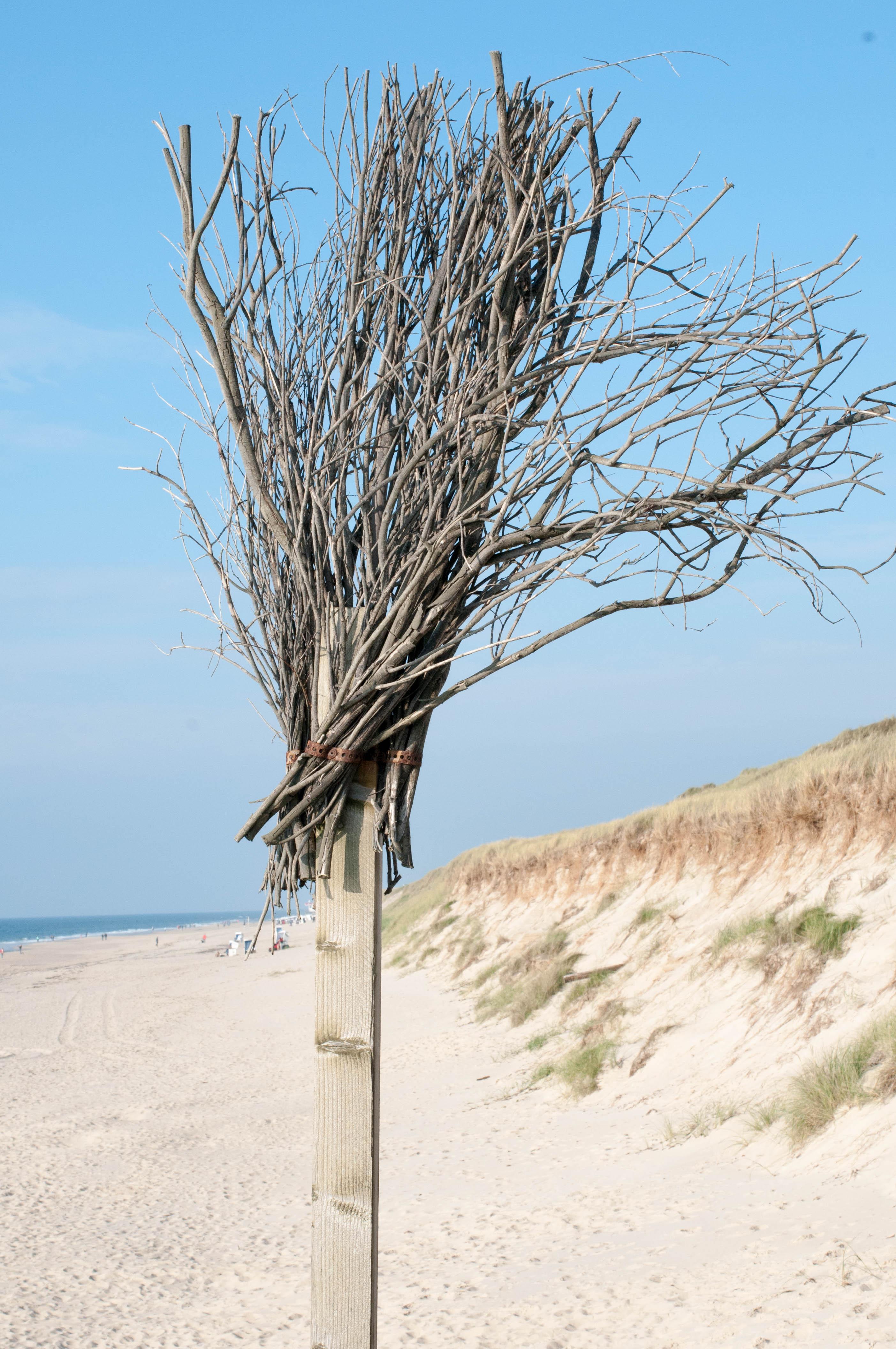 Strandabschnitt Rantum Rute-4354
