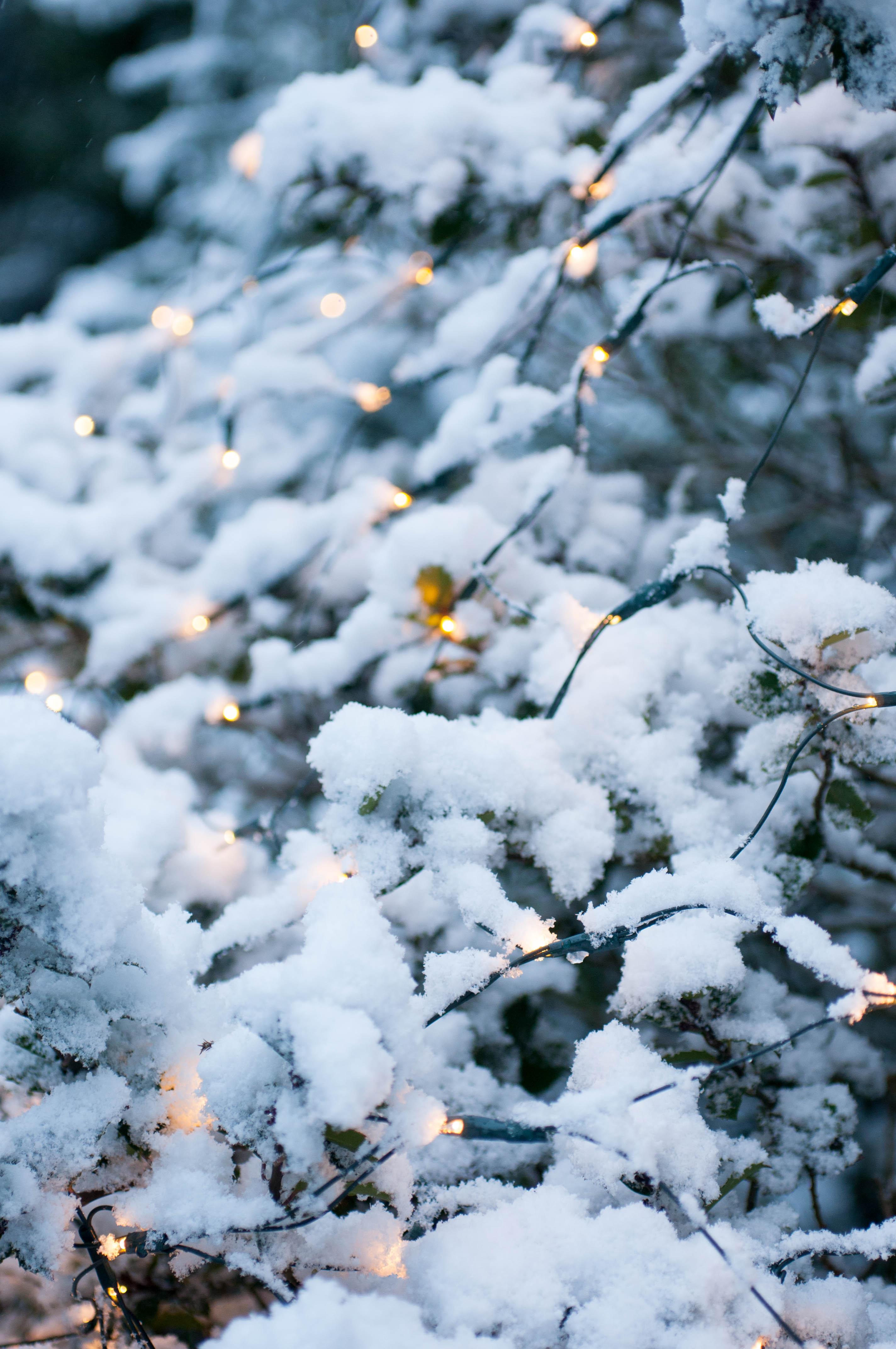 Lichterkette im Schnee