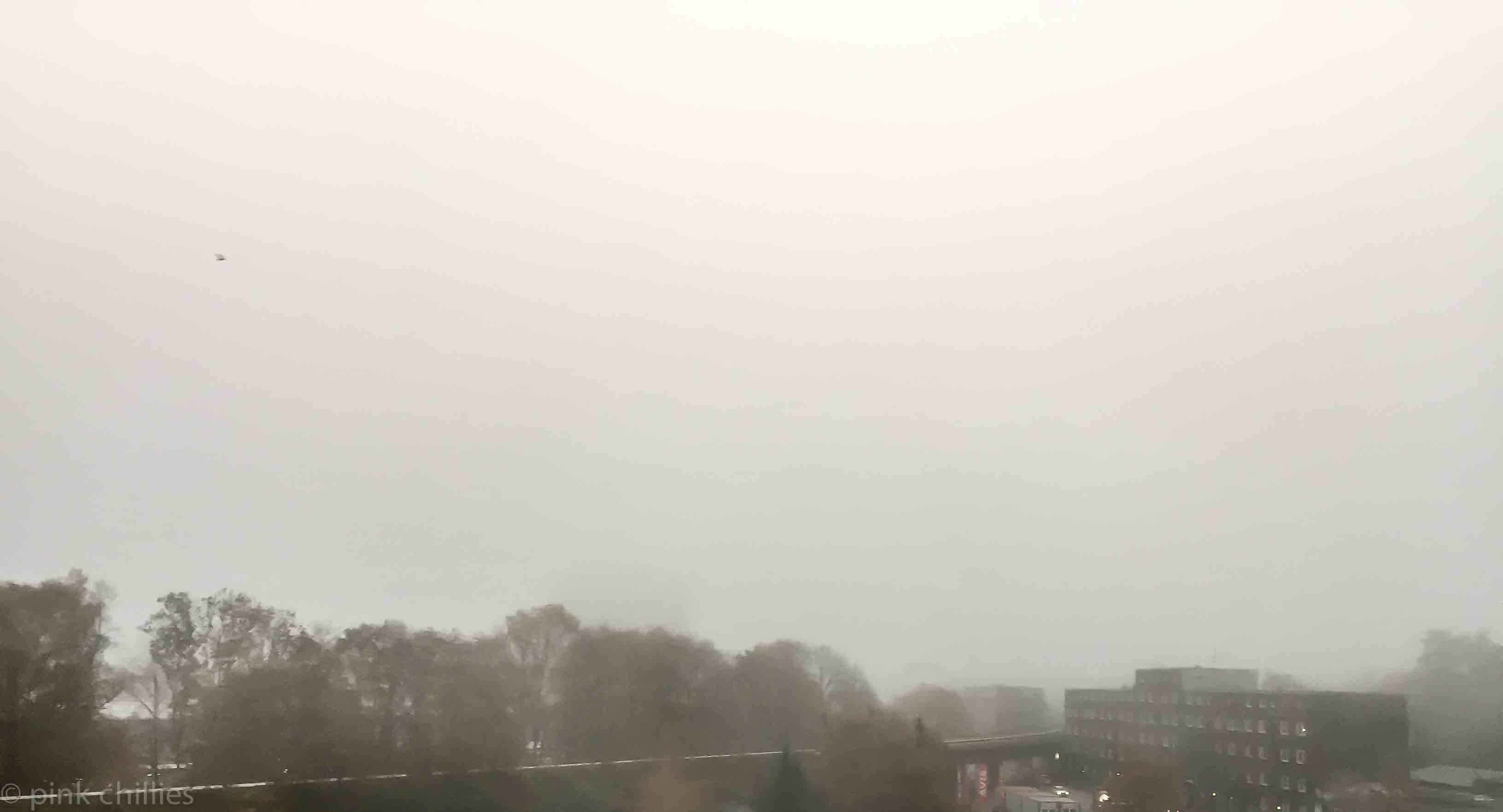 Nebel-7706