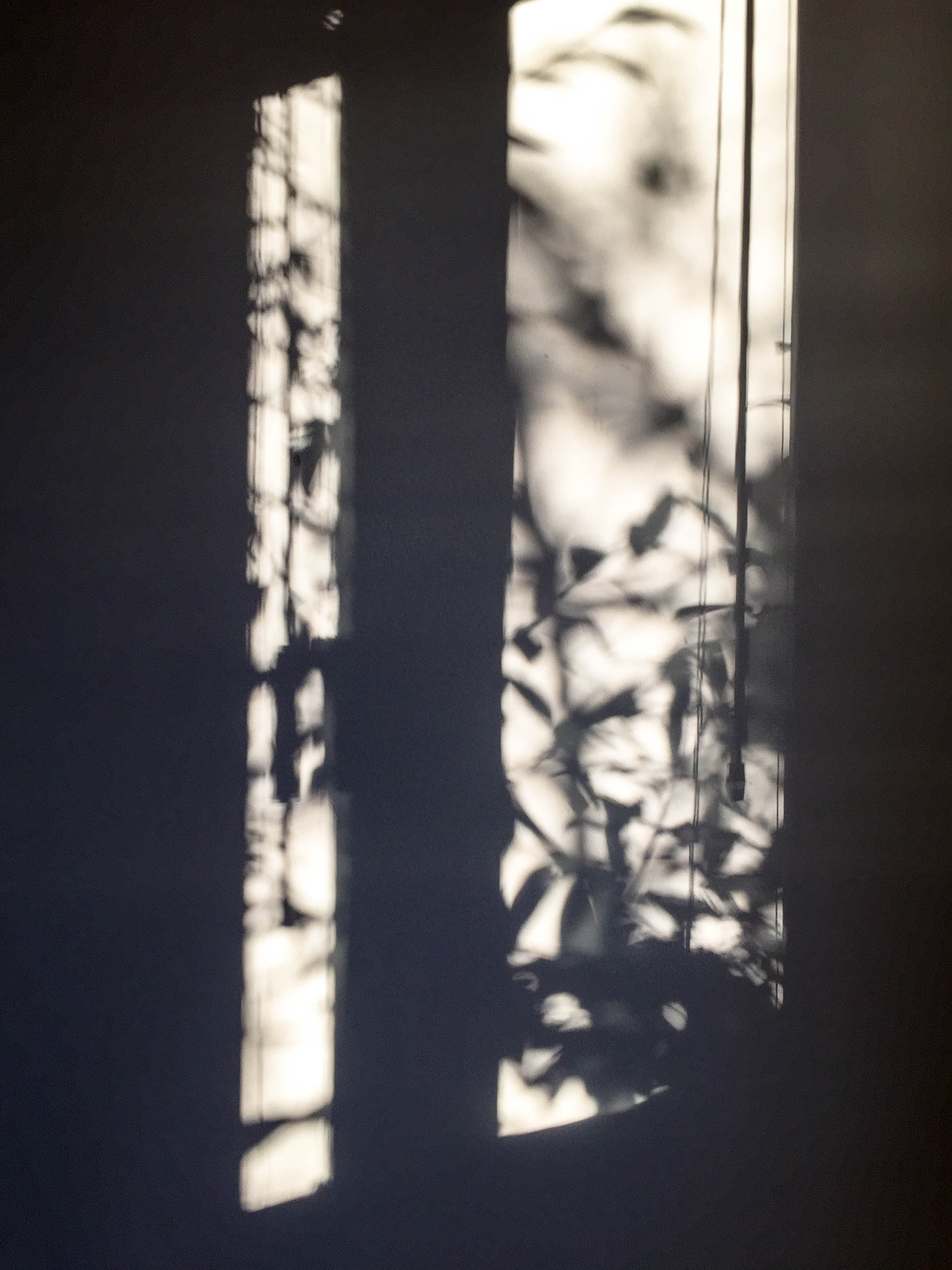 Schattenspiele im Büro