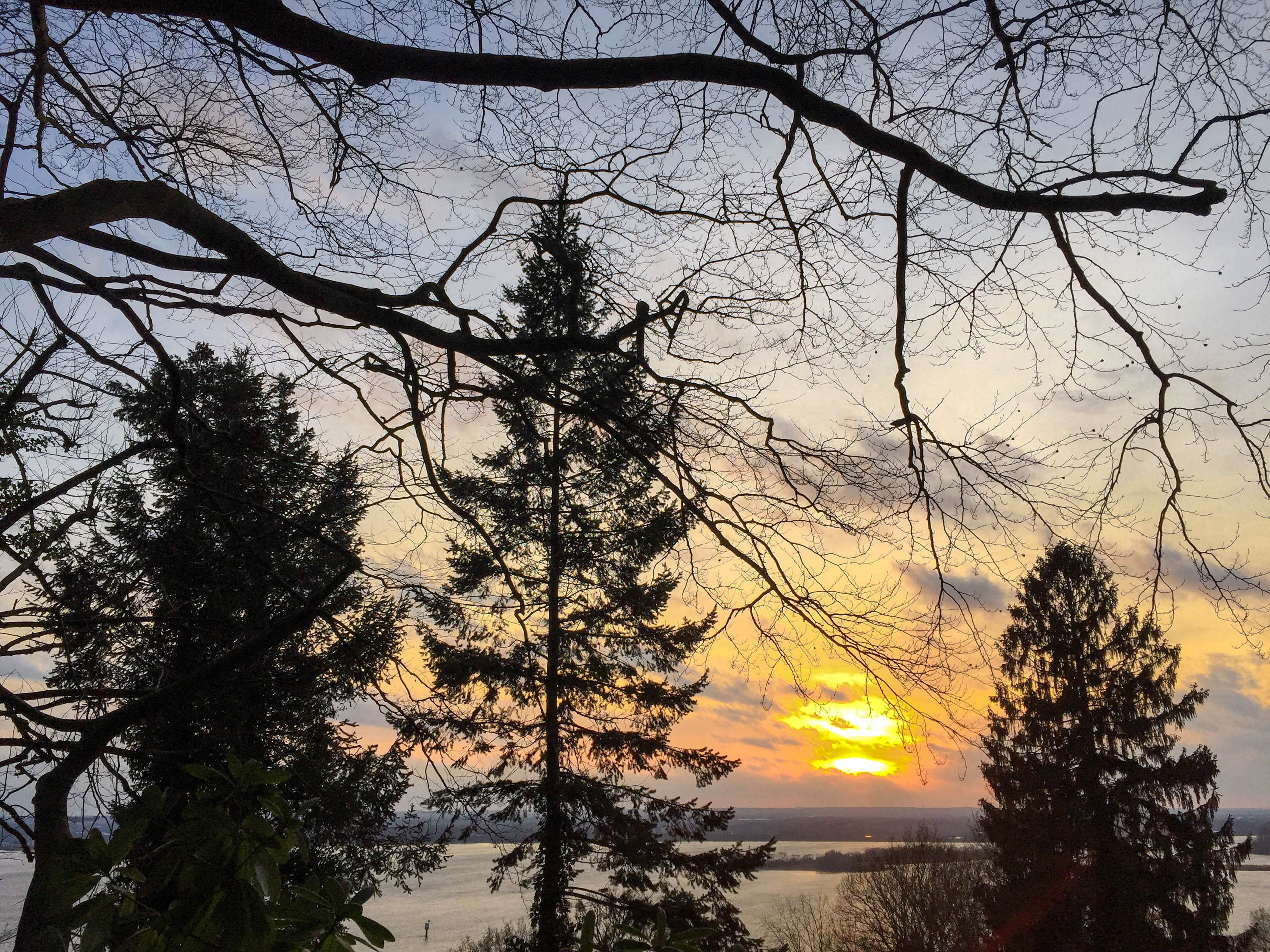 Sonnenuntergang Tanne Elbe
