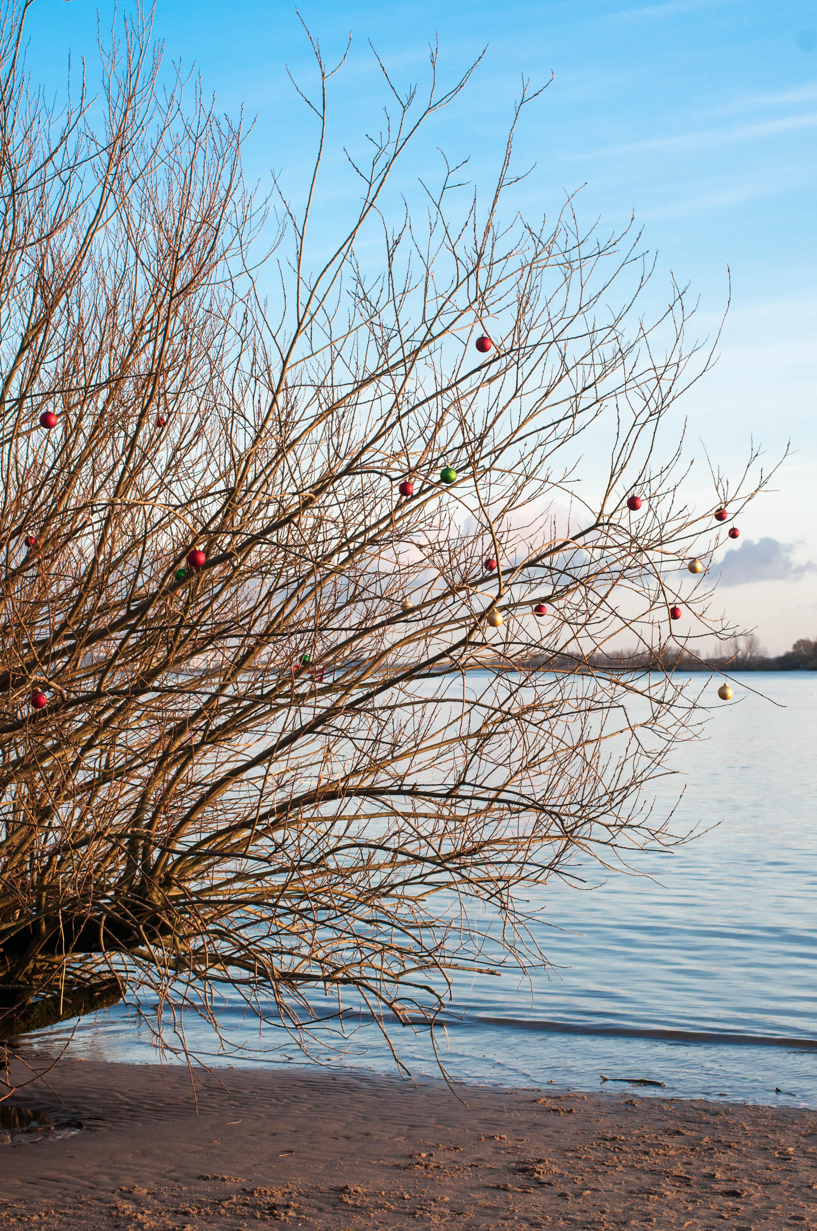 Weihnachtsbaumkugeln-2