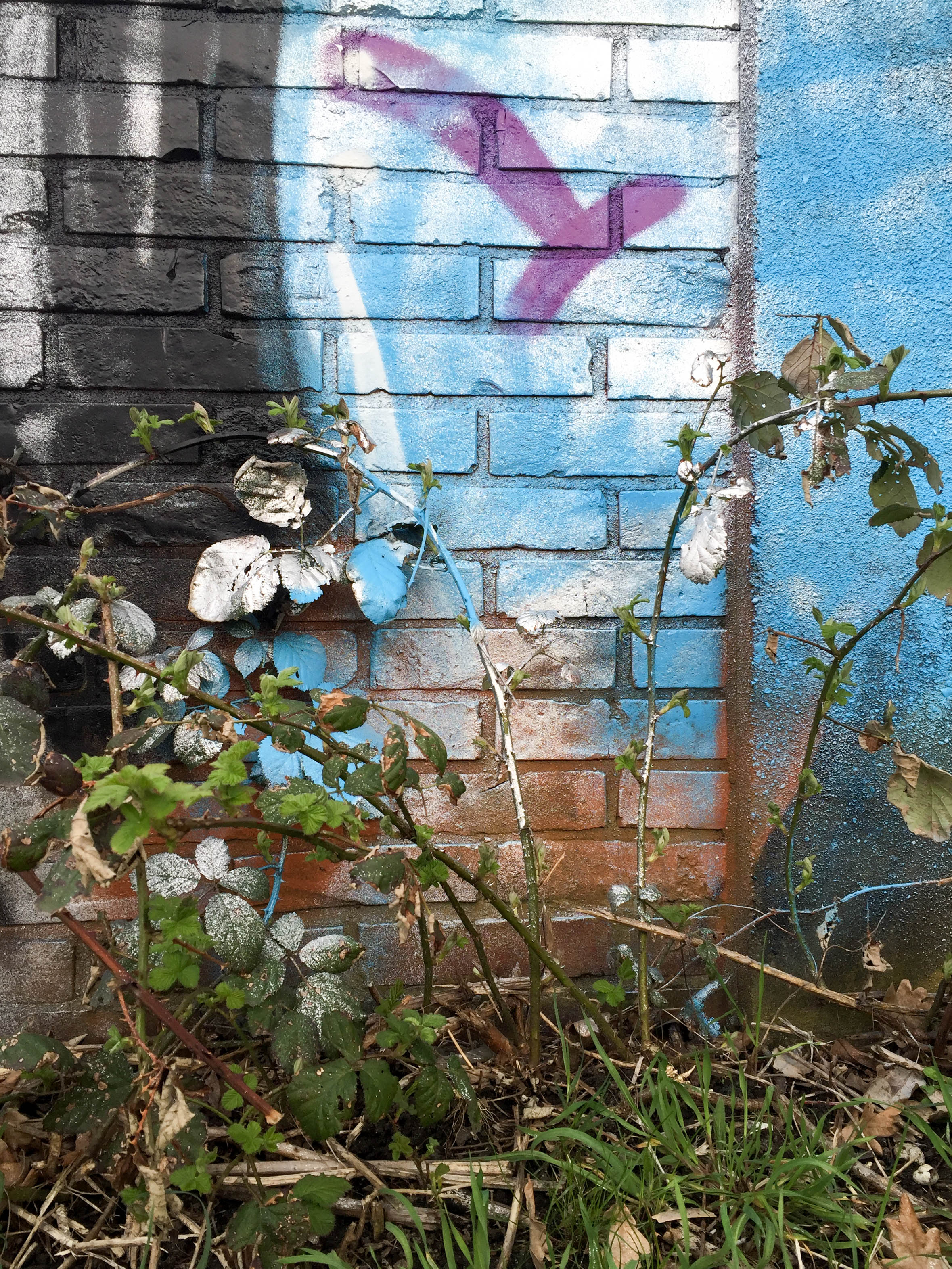 Spray Wand-9468