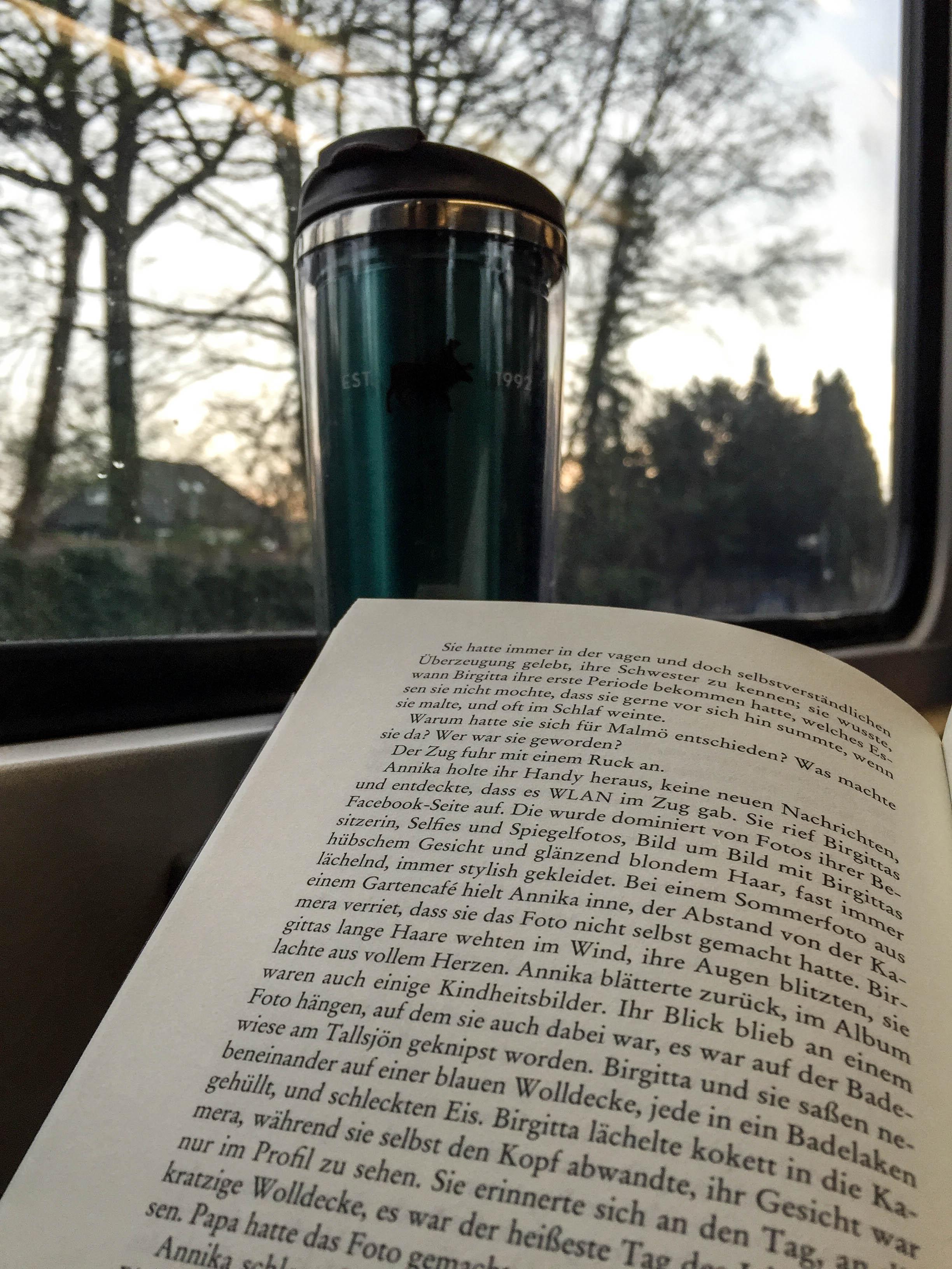 lesen in der Bahn