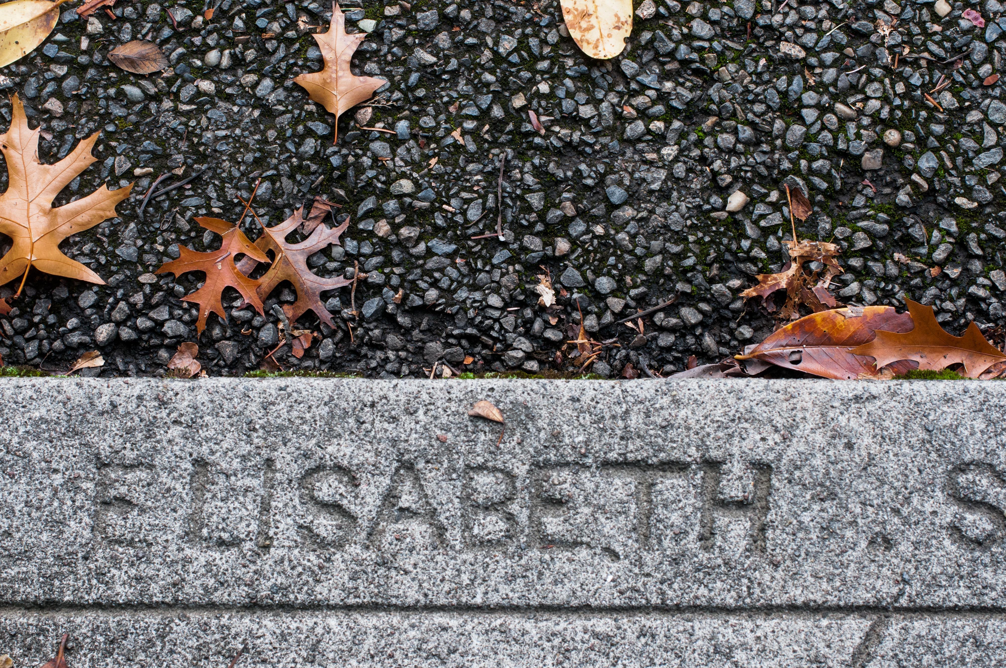 Elisabeth Street Portland