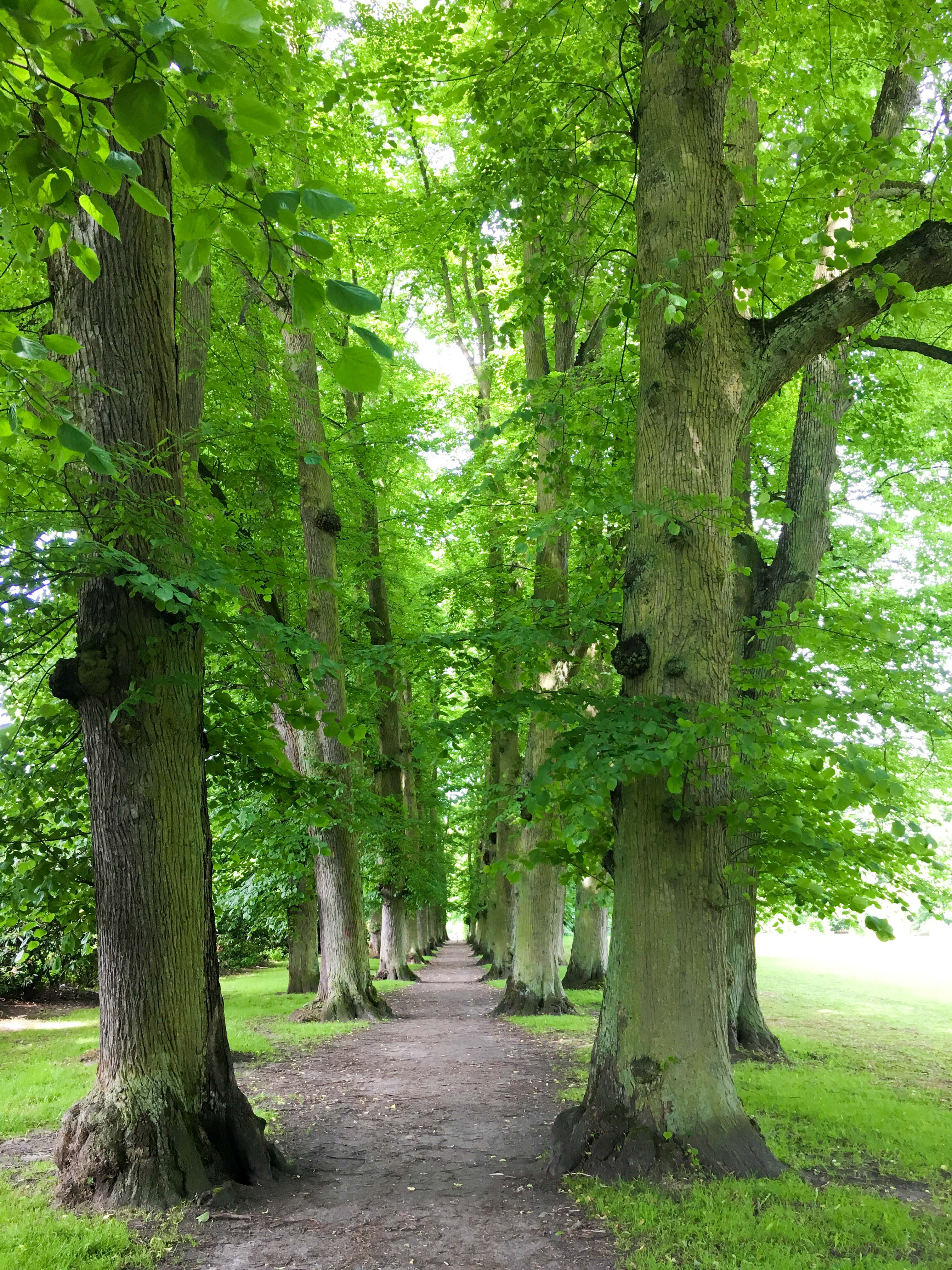 Alle im Hirschpark Hamburg