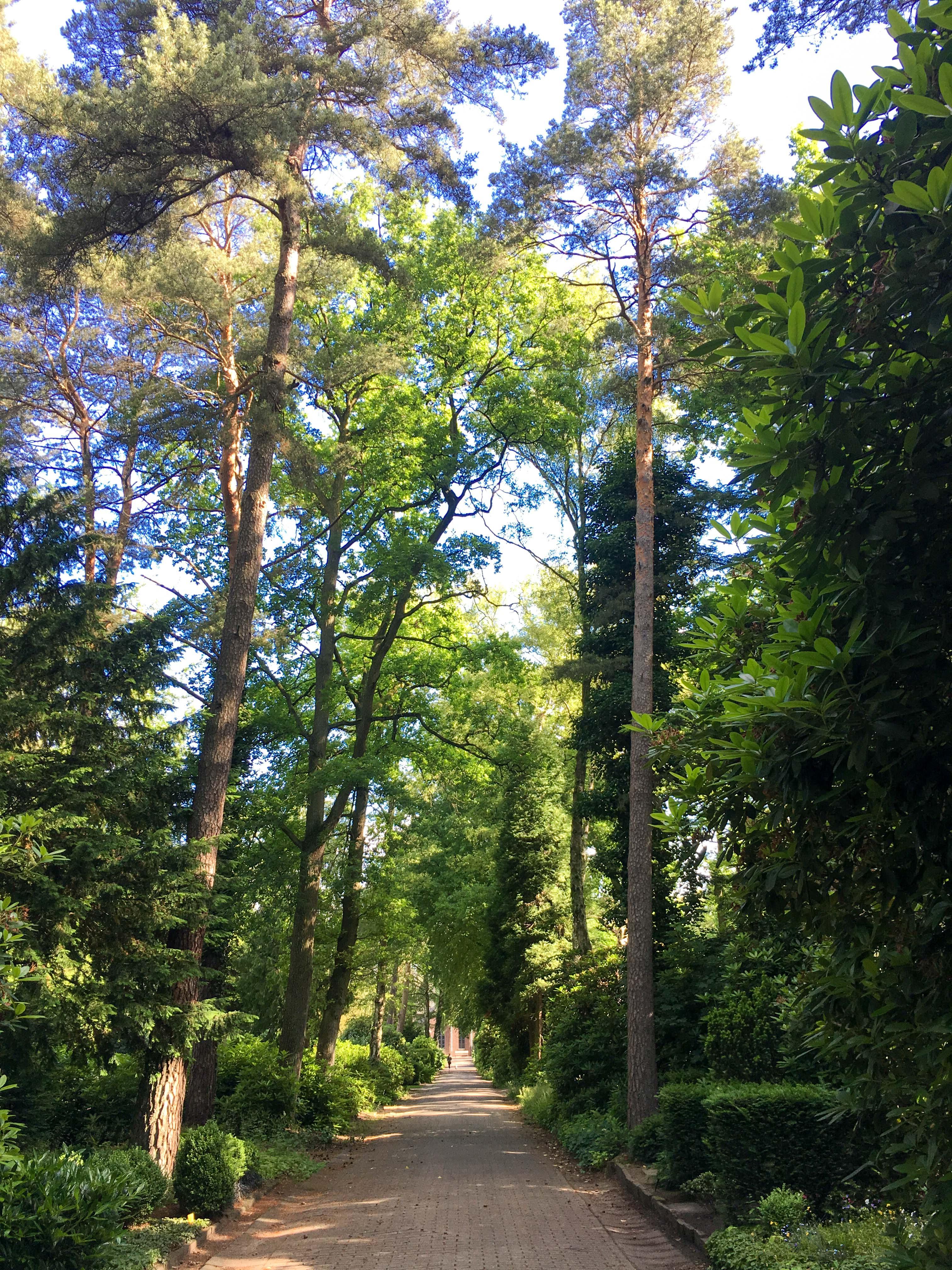 Friedhof Blankenese Hamburg