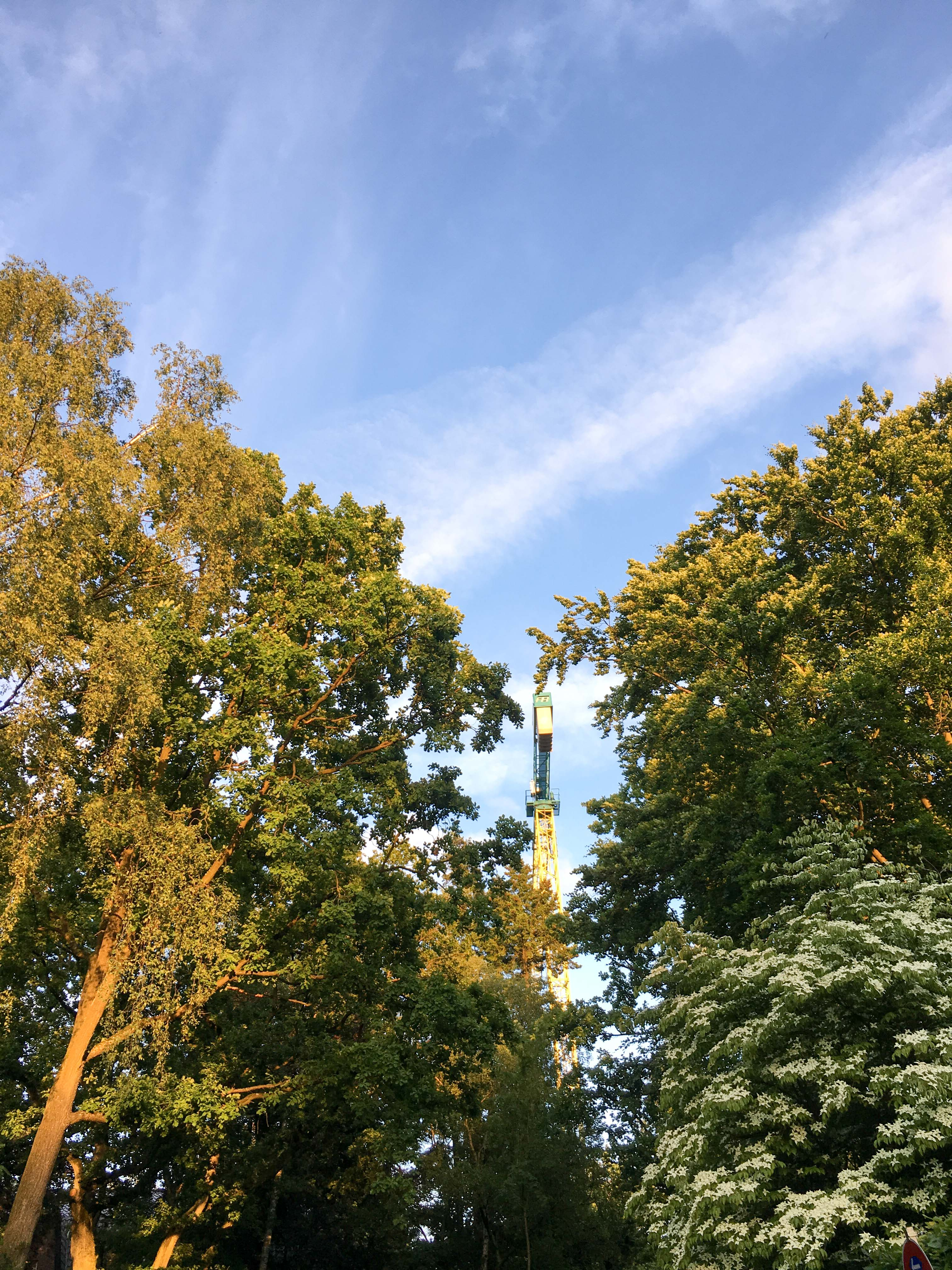 Kran zwischen Bäumen