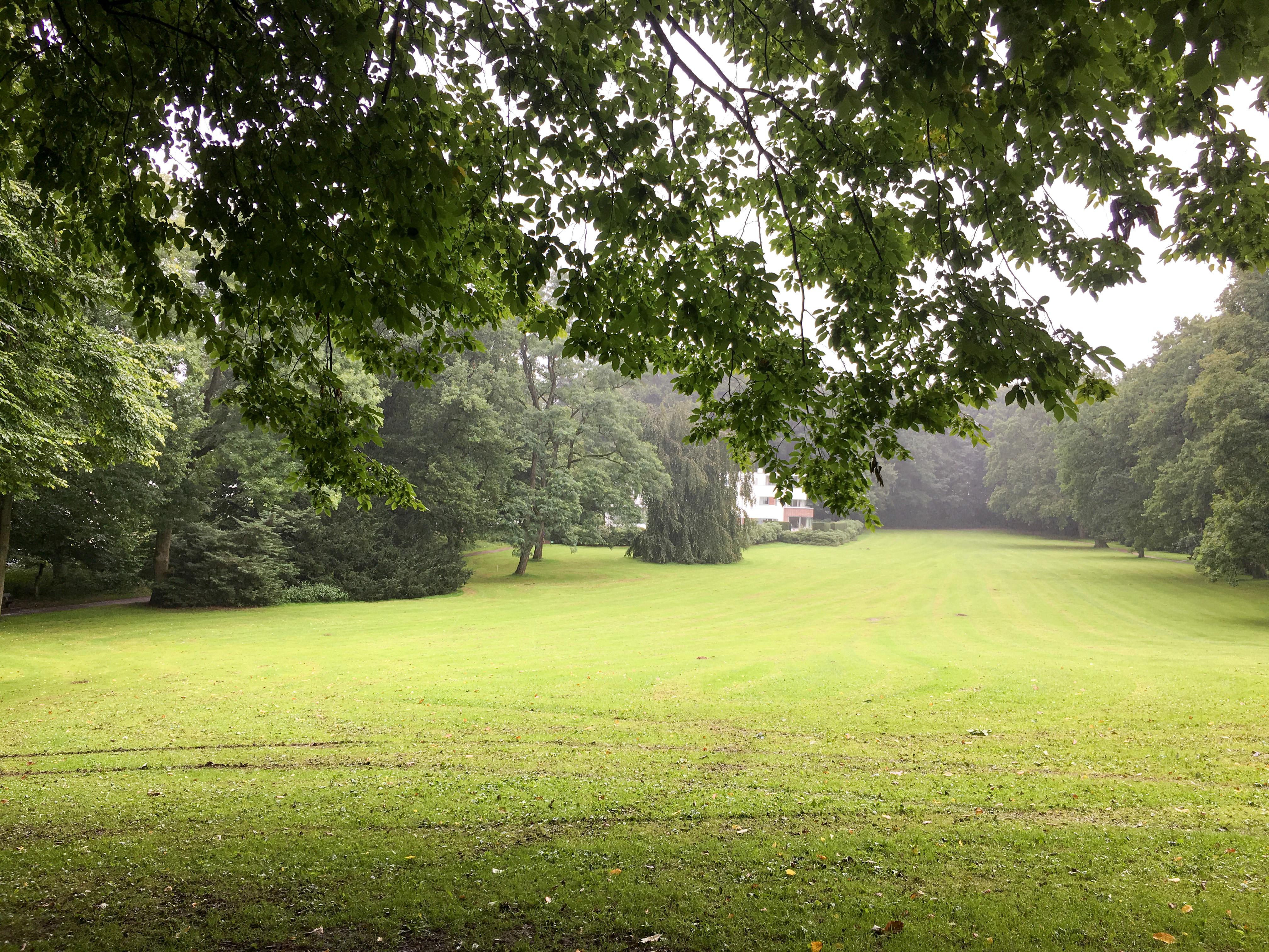 Park und Regen